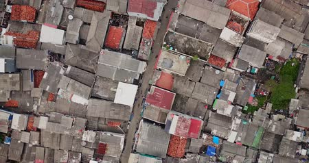 slum house : Aerial view from a drone flying above an alley at slum urban settlement in Jakarta city, Indonesia. Shot in 4k resolution