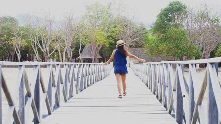 Флорес : Back view of a young woman walking on the wooden jetty while enjoying holiday at Komodo Island near Bali, Indonesia Стоковые видеозаписи