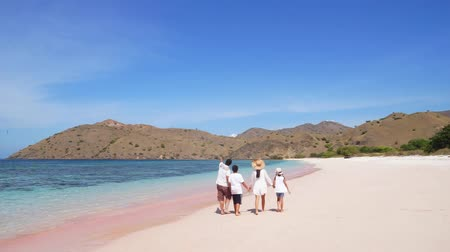 Флорес : Happy family on vacation enjoying the beautiful landscape of Pink beach in Komodo Island near Bali, Indonesia Стоковые видеозаписи