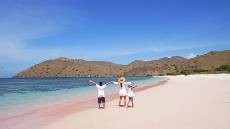 Флорес : Rear view of happy family enjoying the beautiful landscape of Pink beach in Komodo Island near Bali, Indonesia Стоковые видеозаписи