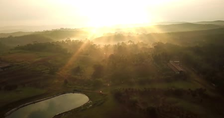 palm oil plantation : Beautiful aerial landscape of palm oil plantation and lake at sunrise time in Sukabumi, West Java, Indonesia. Shot in 4k resolution