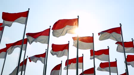 zászlórúd : Slow motion of flags of Indonesia flying on the flagpole with sunlight background. Shot outdoors