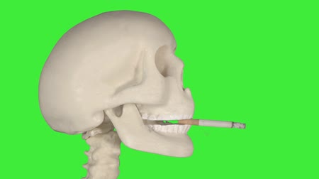 alışkanlık : Human skull smoking a cigarette in the studio with green screen background. Shot in 4k resolution Stok Video
