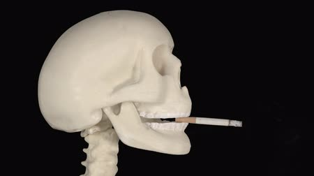 smettere di fumare : Human skull biting a burning cigarette in the studio with dark background. Shot in 4k resolution Filmati Stock
