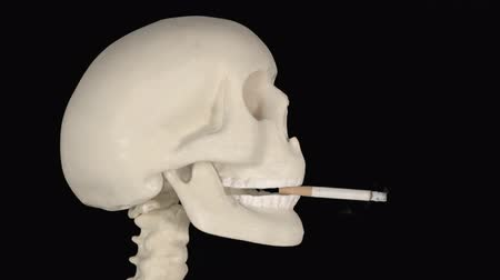 alışkanlık : Human skull biting a burning cigarette in the studio with dark background. Shot in 4k resolution Stok Video
