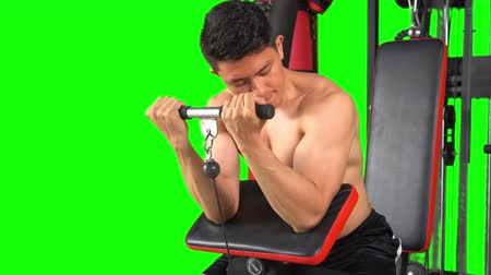 sollevamento pesi : Young man doing heavy weight exercise for biceps with gym equipment. Shot in 4k resolution with green screen background