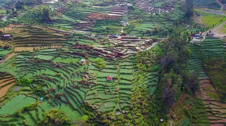 плато : Aerial view of lush tropical farmland at Dieng highland in Central Java, Indonesia. Shot in 4k resolution