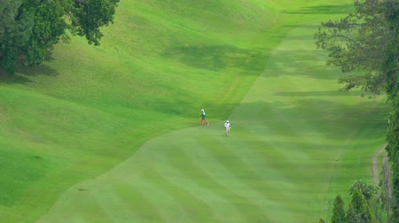 golfové hřiště : BANDUNG, Indonesia - February 13, 2019: Aerial view of male golfer playing golf at Heritage Dago Golf Course. Shot in 4k resolution Dostupné videozáznamy