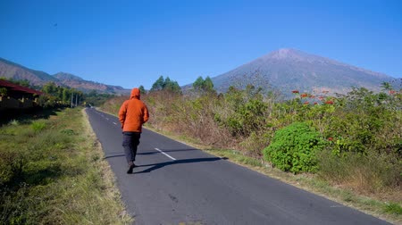 解決 : Back view of a man walking on the countryside road with beautiful mountain view. Shot in 4k resolution