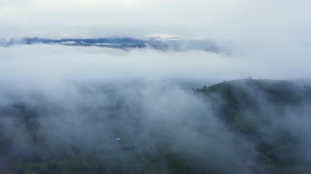 flying upwards : Beautiful aerial view of misty morning above tea plantation highland in Bandung, West Java, Indonesia. Shot in 4k resolution from a drone flying upwards