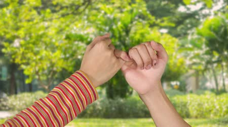 söz : Two women hands making a pinkie promise symbol at the park. Shot in 4k resolution Stok Video