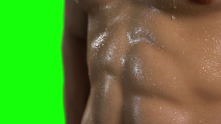 perspiration : Closeup of sweat on six pack abdominal muscle man with green screen background