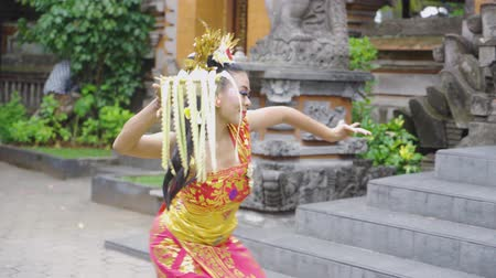 プルメリア : Attractive young balinese dancer performing while carrying frangipani flower and wearing traditional costume in the temple. Shot in 4k resolution