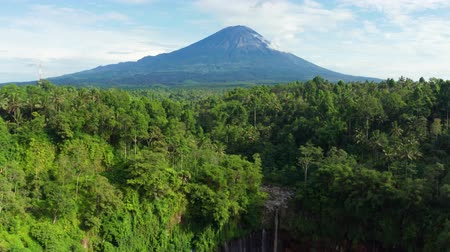 backwards : Exotic aerial view of Tumpak Sewu waterfall with green forest and Mount Semeru background. Shot in 4k resolution from a drone flying backwards