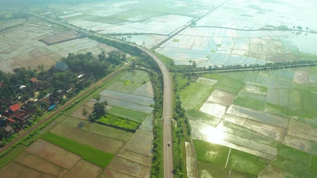 forwards : Beautiful aerial landscape of rice fields with highway and quiet traffic on misty morning. Shot in 4k resolution from a drone flying forwards