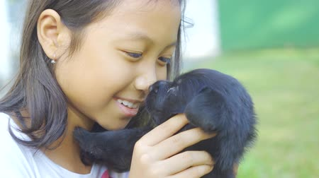 чистокровный : Pretty little girl holding a little puppy while kissing her nose at the park. Shot in 4k resolution