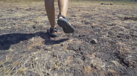 banyuwangi : Feet of young woman walking on the dry grassland at Baluran National Park, East Java, Indonesia. Shot in 4k resolution