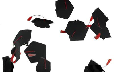 学士 : Slow motion of graduation hats thrown on the air in the studio. Isolated on white background 動画素材