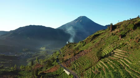 плато : Beautiful aerial view of plantation land in Dieng Plateau with Mount Sundoro background at Wonosobo, Cental Java, Indonesia. Shot in 4k resolution from a drone flying forwards Стоковые видеозаписи