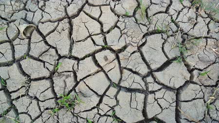 neúrodný : Top view of dry and cracked mud on the farmland during dry season. Shot in 4k resolution