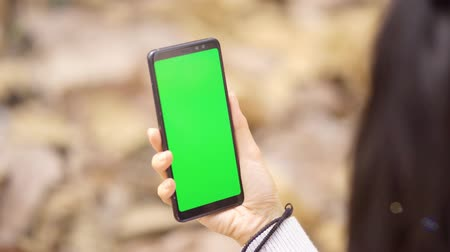 anonyme : Closeup of woman hand holding a mobile phone with empty green screen at the autumn park. Shot in 4k resolution
