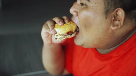 ganancioso : Closeup of obese man eating burger while sitting in the restaurant. Shot in 4k resolution