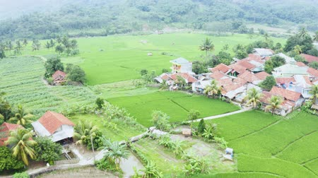 keet : Beautiful aerial view of a village and green rice field at a valley. Shot in 4k resolution from a drone flying forwards