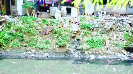 varal : JAKARTA, Indonesia - January 29, 2020: Squatter shacks and houses on the riverside with dirty garbage polluting the river Vídeos