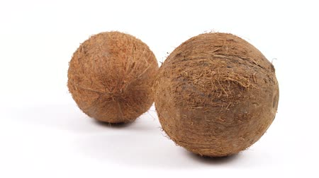 rehydration : Two ripe whole brown tropical coconuts rotating on white isolated background. Healthy tropical fruits. Loopable seamless cocos rotating