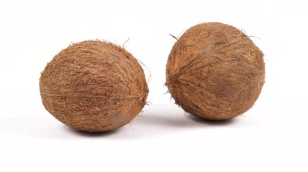 rehydration : Two ripe whole brown tropical coconuts rotating on white isolated background. Healthy fresh tropical fruits. Loopable seamless cocos rotating Stock Footage