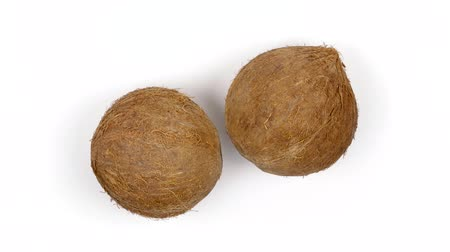 rehydration : Top view of two ripe whole brown tropical coconuts rotating on white isolated background. Healthy tropical fruits. Loopable seamless cocos rotating