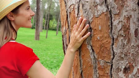 sentido : Woman in red dress and hat sliding hand along big old tree in slow motion. Female hand touching green crust surface of tree trunk