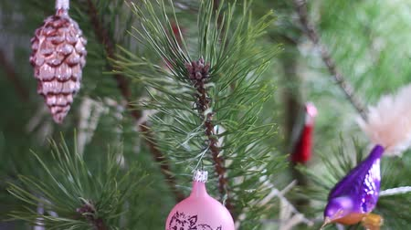 ladin : Christmas decoration on the tree Stok Video