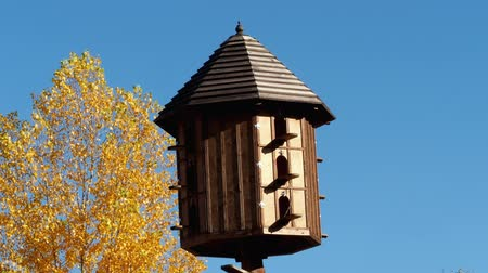 pigeon nest : The wooden dovecote on the background of the blue sky. A large pigeon loft or dovecote.