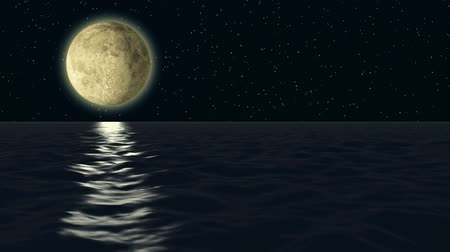 horizonte sobre a água : A magic moon light shining over the quiet water wave ocean at night.