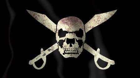 pirat : Pirate worn stained grunge flag waving Wideo