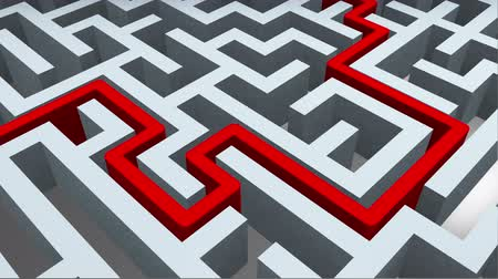 solution : Maze with solution