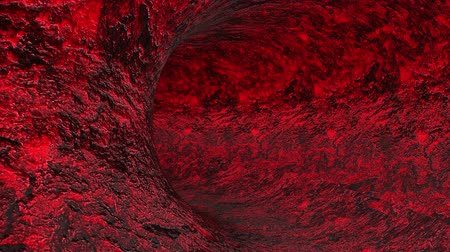 erythrocyte : Red organic tunnel