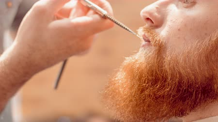 modern manhood : Professional barber cutting beard of his client