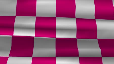 pixéis : Highly detailed checkered racing flag with fabric texture waving in the wind - perfect background
