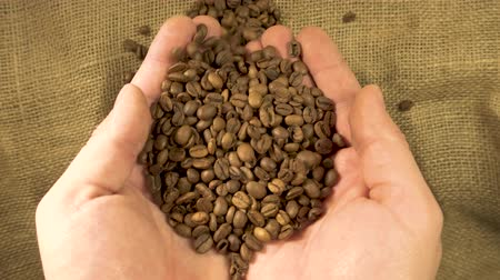 moka : Hands checking coffee grain slow motion