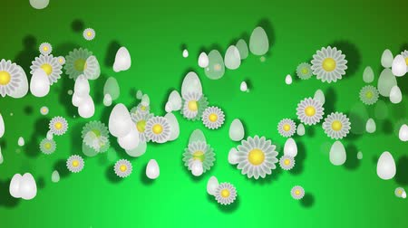 Green background with Easter eggs of white color. Green gradient background with paper eggs and daisies. Easter background