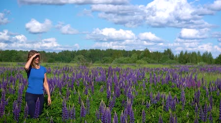 delgado : A slender beautiful woman, walks through the meadow among the purple flowers and smiles on a Sunny day. Stock Footage