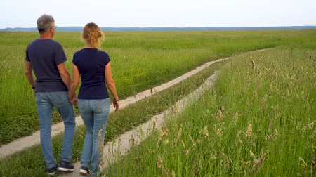 çim : Slender man and woman in jeans go on the forest road in the field among high green grass and admire nature at sunset.