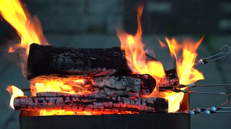 Bright fire and blue smoke envelop the burning wood and skewers in the grill.