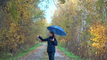 A slender woman in a blue jacket and blue jeans walks through the autumn Park on wet paths under a blue umbrella with white polka dots and smiles on a Sunny autumn day.