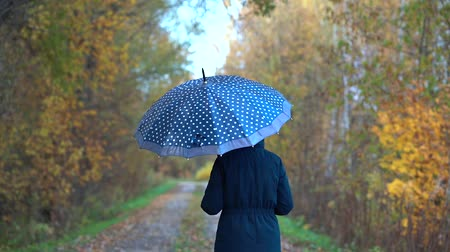 A slender, sweet woman in a blue jacket and blue jeans walks through the autumn Park on wet paths under a blue umbrella with white polka dots in the fall.