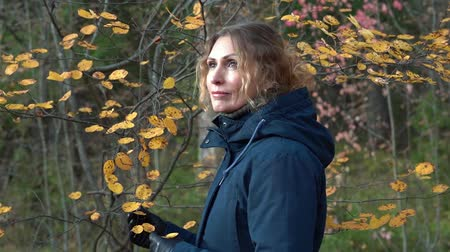 A slender sweet woman walks through a beautiful autumn forest among birches and firs and admires the yellow dry leaves on the bushes on an autumn day.