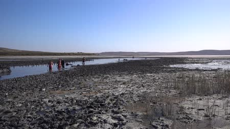 plavky : People in bathing suits walk on the mud volcanic lake Chokrak on a Sunny summer day and have fun.
