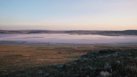Dry grass grown on large rocks sways in a strong wind at sunset against a background of pink lake, open spaces with dry yellow grass and low mountains in summer.